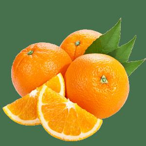 Orange/Santra/संतरा