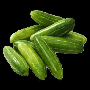Ivy Gourd/ Kundru/कुंदरू