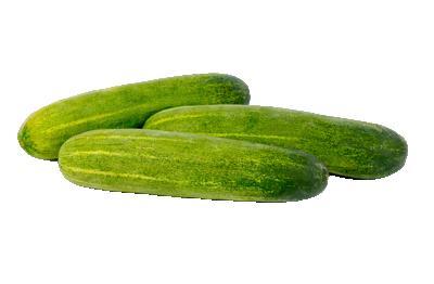 Cucumber/Kheera/खीरा